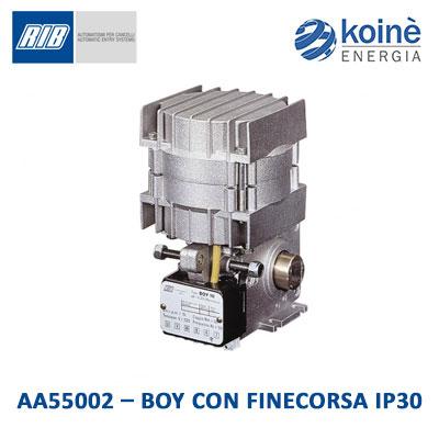 rib-AA55002-BOY-CON-FINECORSA-IP30
