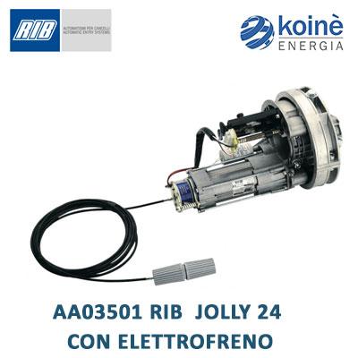 AA03501 RIB JOLLY 24 CON ELETTROFRENO