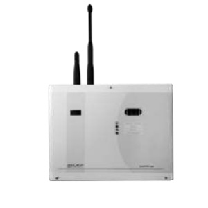 PEPONE-B-GSM