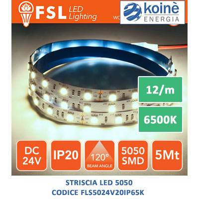 fls5024v20ip65k striscia led 6500k